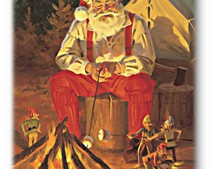 Image result for santa with cub scout